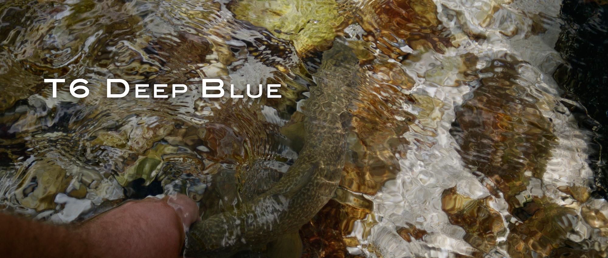 t6 deep blue